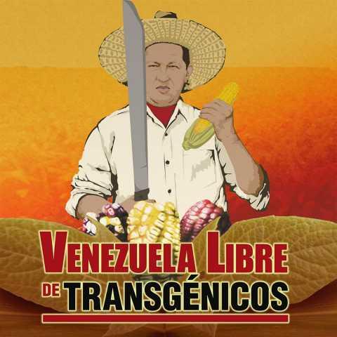 venezuelalibretransg