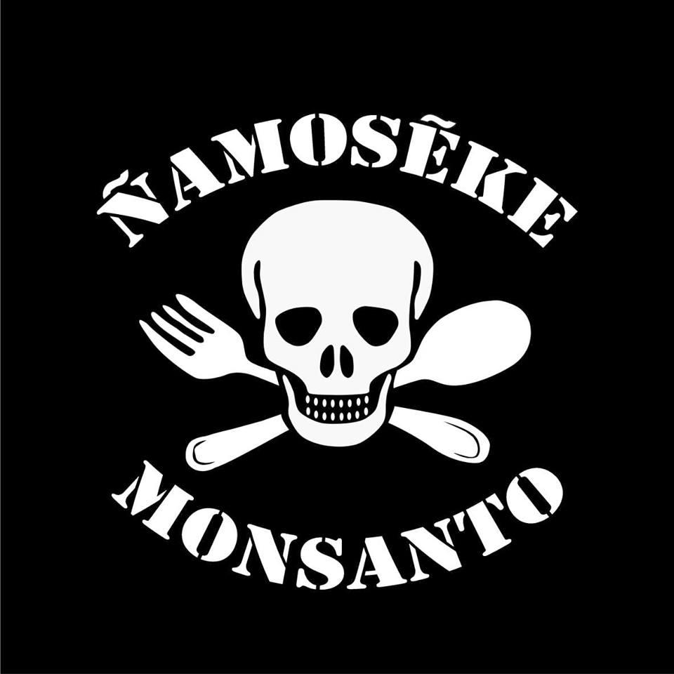 logo_ñamoseke.jpg