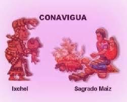 conavigua9mzo15.jpg