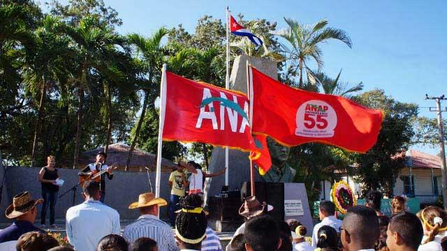bandera-51-anap.jpg