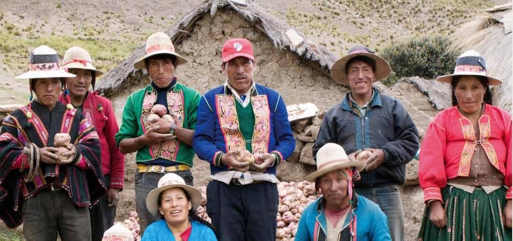 Bolivia: TCP resuelve que pueblos indígenas no necesitan personería  jurídica para sanear sus tierras – CLOC Vía Campesina