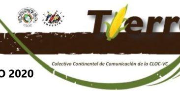 Boletín Tierra Julio 2020