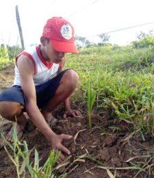 EM DEFESA DA AMAZÔNIA, FORTALECEMOS AGRICULTURA FAMILIAR CAMPONESA