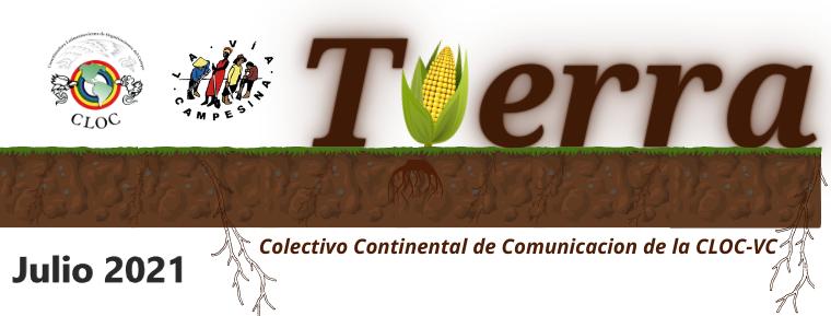 Boletín Tierra Julio 2021
